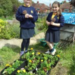 schools in bloom (3)